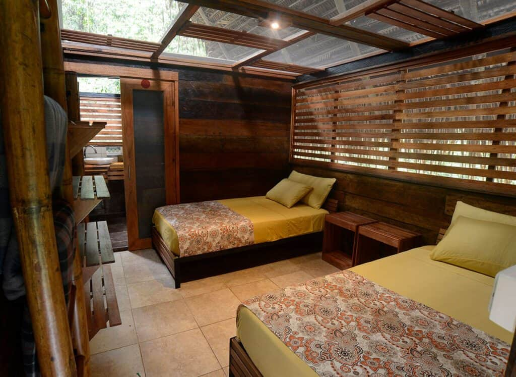rooms in the jungle