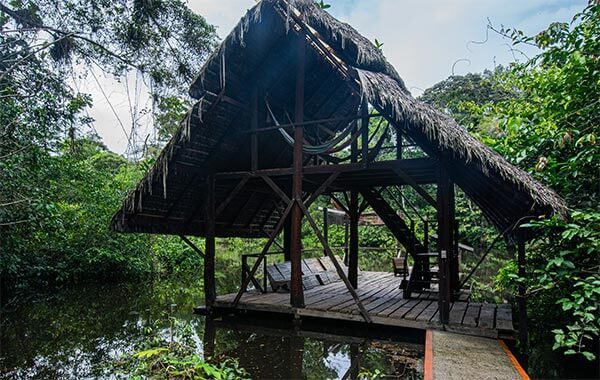 hut over the cuyabeno river