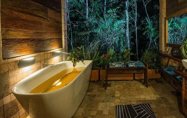 the best accommodation in the jungle cuyabeno reserve
